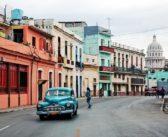 Cuba , la France forme des équipes cynophiles à détecter l'argent