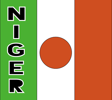 NIGER : Projet pour 2022 de création d'une ENVR
